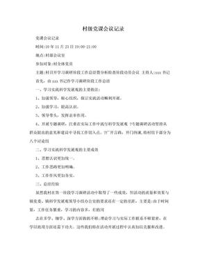 村级党课会议记录.doc
