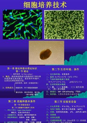 细胞培养技术.ppt