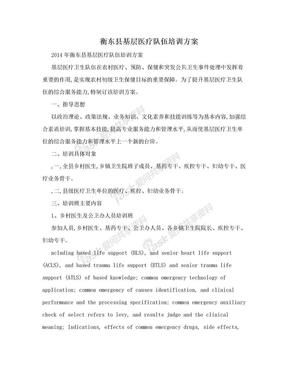 衡东县基层医疗队伍培训方案.doc