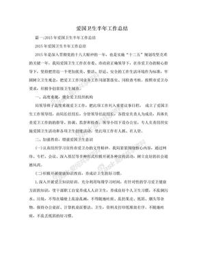 爱国卫生半年工作总结.doc