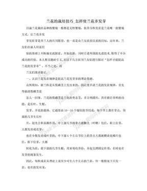 兰花的栽培技巧_怎样使兰花多发芽.doc