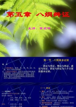 中医诊断学第五章 八纲辨证.ppt