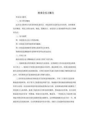 村委会实习报告.doc