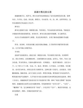 新疆少数民族乐器.doc