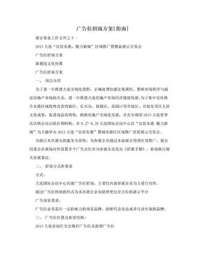 广告位招商方案[指南].doc
