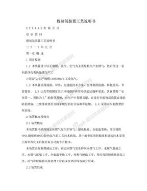 煤制氢装置工艺说明书.doc