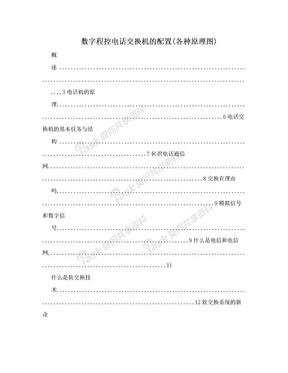 数字程控电话交换机的配置(各种原理图).doc