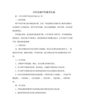 少年宫葫芦丝教学计划.doc