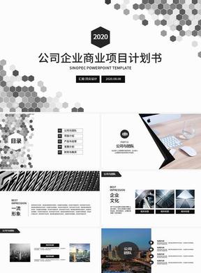 黑白六边形公司商业项目计划书PPT 1188.pptx