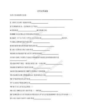 艺考文管试卷.docx