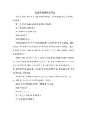 党支部委员改选报告.doc