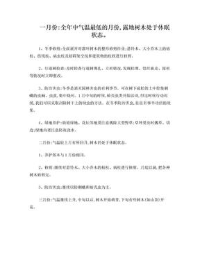 苗木养护计划.doc