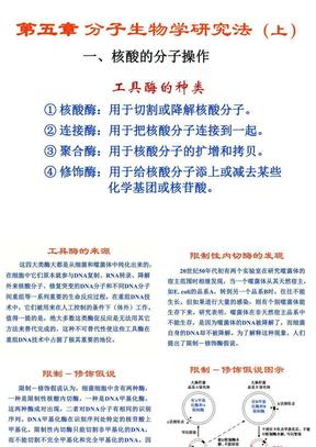04第五章分子生物学研究法(上).ppt