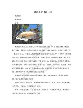 澳洲银鲈_473_443.doc