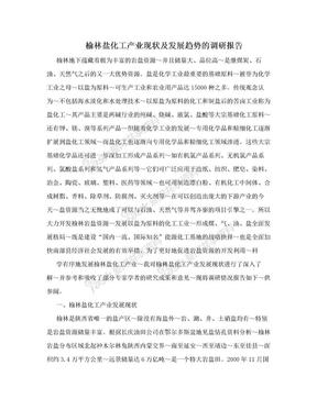 榆林盐化工产业现状及发展趋势的调研报告.doc