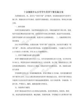十亩地镇中心小学学生营养午餐实施方案.doc