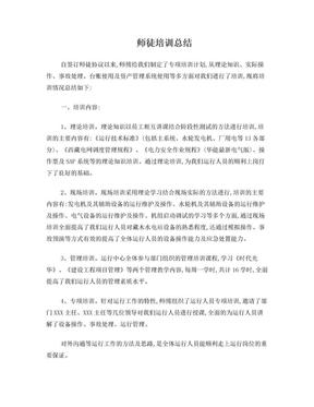 电厂师徒培训总结.doc
