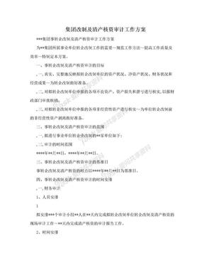 集团改制及清产核资审计工作方案.doc