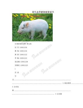 原生态养猪创业策划书.doc
