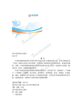 养生项目商业计划书.doc