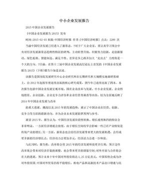 中小企业发展报告.doc