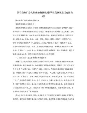 国有企业厂办大集体的整体改制(攀枝花钢城集团有限公司).doc