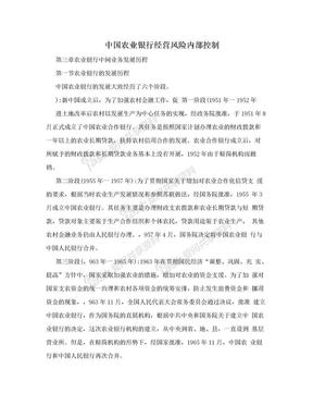 中国农业银行经营风险内部控制.doc