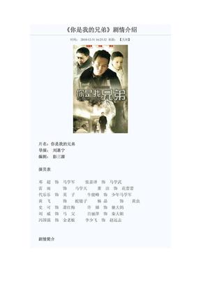 《你是我的兄弟》剧情介绍.pdf