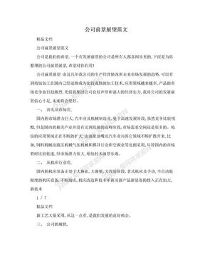 公司前景展望范文.doc
