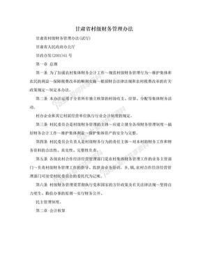 甘肃省村级财务管理办法.doc