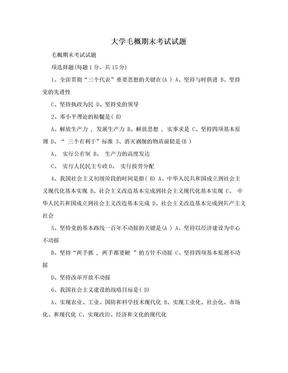 大学毛概期末考试试题.doc