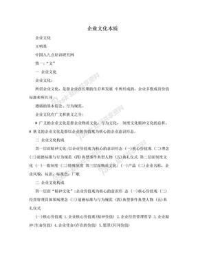 企业文化本质.doc