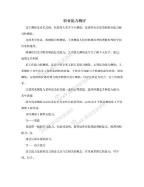 职业能力测评.doc