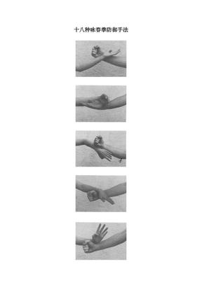 十八种咏春拳防御手法.pdf