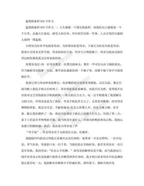 温暖的旅程800字作文.doc