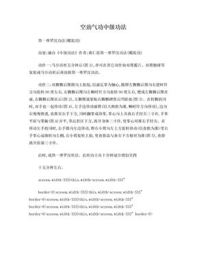 空劲气功中级功法.doc