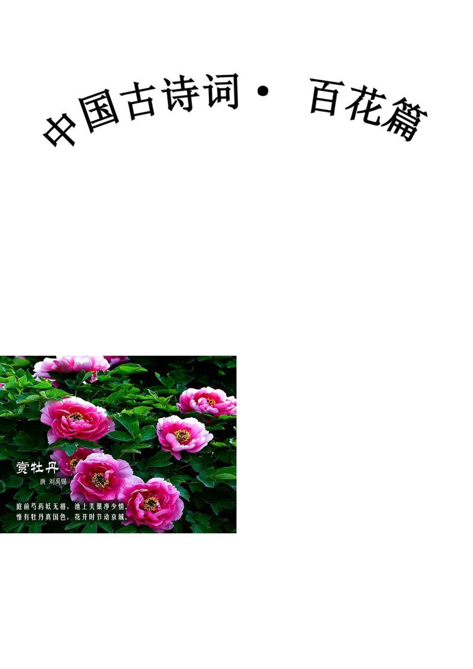 中国古诗词-百花篇(赏心悦目).ppt