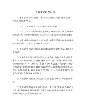支部委员选举办法.doc