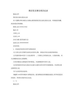 基层党支部支委会记录.doc