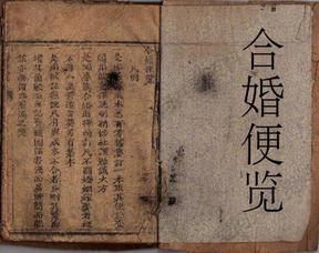 合婚便览(武水刘澄之集订).pdf