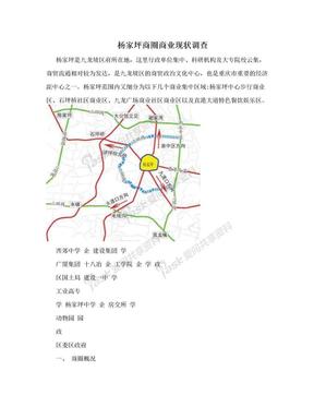 杨家坪商圈商业现状调查.doc