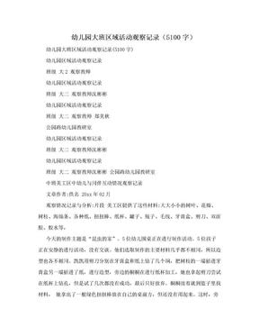 幼儿园大班区域活动观察记录(5100字).doc