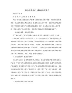 春季安全生产大检查自查报告.doc