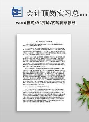 会计顶岗实习总结报告3000字.docx