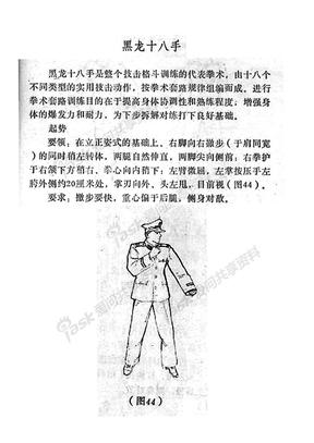 黑龙十八手.pdf