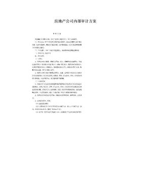 房地产公司内部审计方案.doc