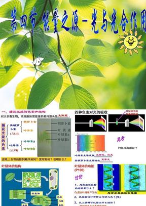 第4节 能量之源-光与光合作用.ppt