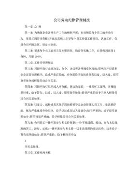 公司劳动纪律管理制度.doc