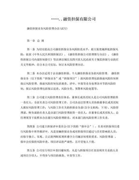 融资担保公司风控管理办法.doc