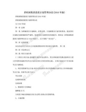碧桂园集团进度计划管理办法(2016年版).doc